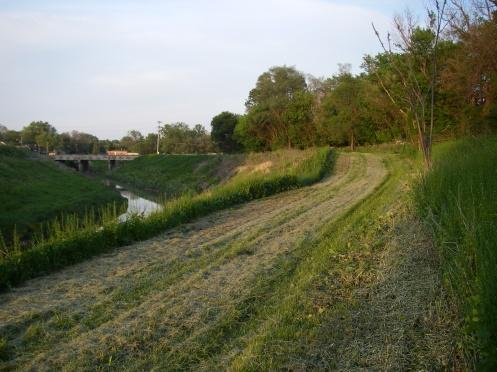 Grass Red Run near Heavenly Lane