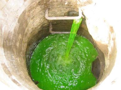 Green Dye Storm Drain