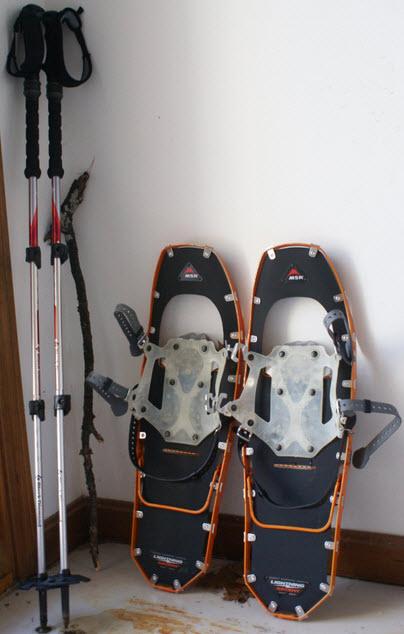 Poles SnowShoe Combo