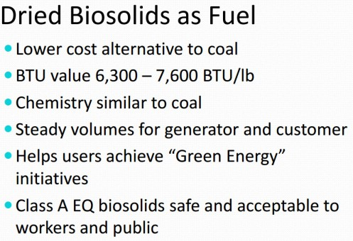 Biosolids as fuel
